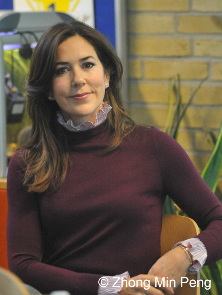 Crownprincess Mary of Denmark upper body look